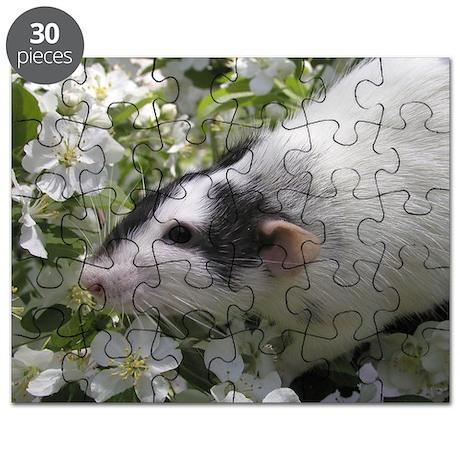 ZRR Aiden Puzzle