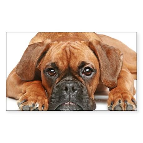 German Boxer dog - Sticker (Rectangle 10 pk)
