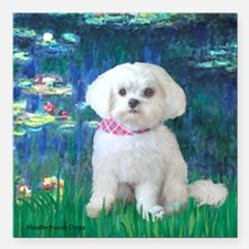 """MP-LILIES5-Maltese-Rocky.png Square Car Magnet 3"""""""