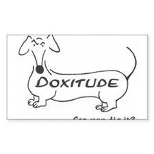 Maximum Doxitude Decal