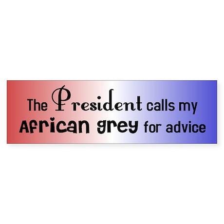 African Grey Presidential Advisor Bumper Sticker