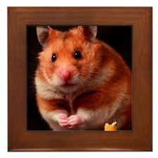 Hamster Framed Tile