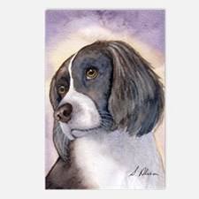 Springer spaniel waiting for a walk Postcards (Pac
