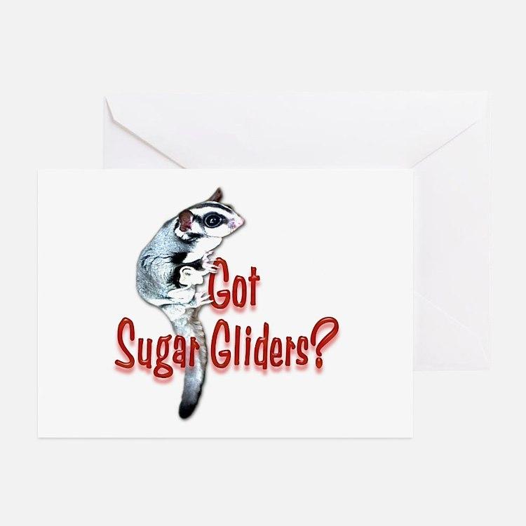 Sugar Glider Greeting Cards (Pk of 10)