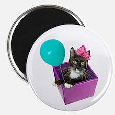 Tuxedo Cat Birthday Magnet