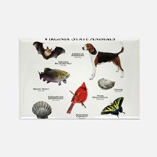 Virginia State Animals Rectangle Magnet