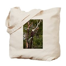 American Bald Eagle #1 Tote Bag