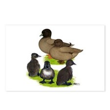 Call Duck Khaki Family Postcards (Package of 8)