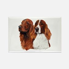 Irish Setters Rectangle Magnet