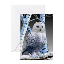 BLUE-EYED SNOW OWL Greeting Card