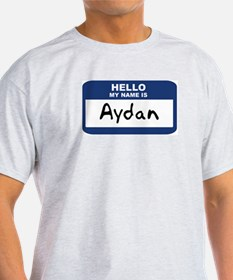 Hello: Aydan Ash Grey T-Shirt