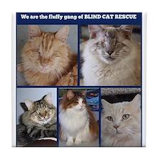 Fluffy Gang of BCR Tile Coaster