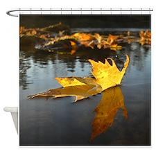 Fallen Leaf Reflection Shower Curtain