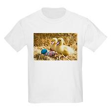 baby ducks and eggs T-Shirt