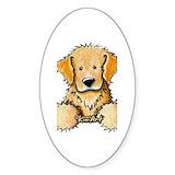 Golden retriever 10 Pack