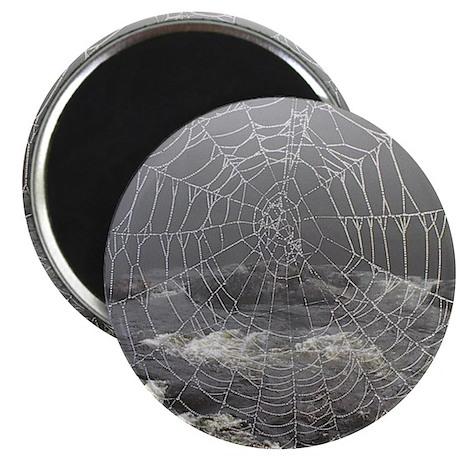 Thorne's Web Magnet