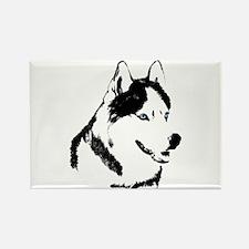 Husky Malamute Sled Dog Art Rectangle Magnet