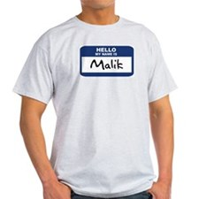 Hello: Malik Ash Grey T-Shirt