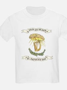 Erin Go Bragh Sunrays on Harp T-Shirt