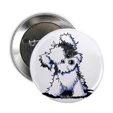 """Curious BW Havanese 2.25"""" Button (10 pack)"""