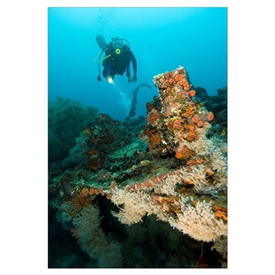 Diver exploring the Cross Wreck Framed Print