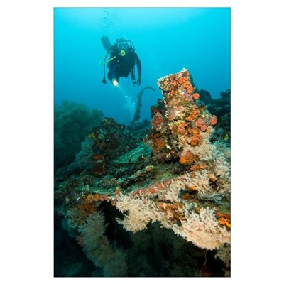 Diver exploring the Cross Wreck Poster