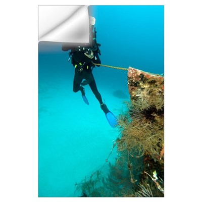 Diver exploring the Cross Wreck Wall Decal