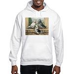 Show Racer Trio Hooded Sweatshirt