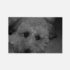 Wheaton Terrier Rectangle Magnet