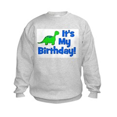 It's My Birthday! Dinosaur Kids Sweatshirt