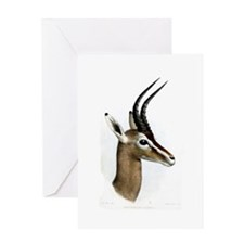 Antelope Illustration Greeting Card