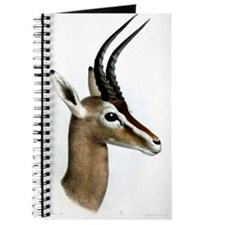 Antelope Illustration Journal