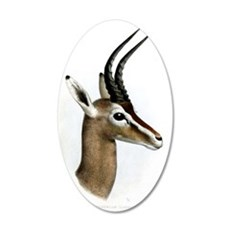 Antelope Illustration Wall Decal