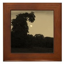 Dragon Tree and The Moon Framed Tile
