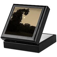 Dragon Tree and The Moon Keepsake Box