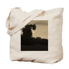 Dragon Tree and The Moon Tote Bag