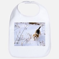 Bib - Beagle Hunting A Rabbit In The Snow