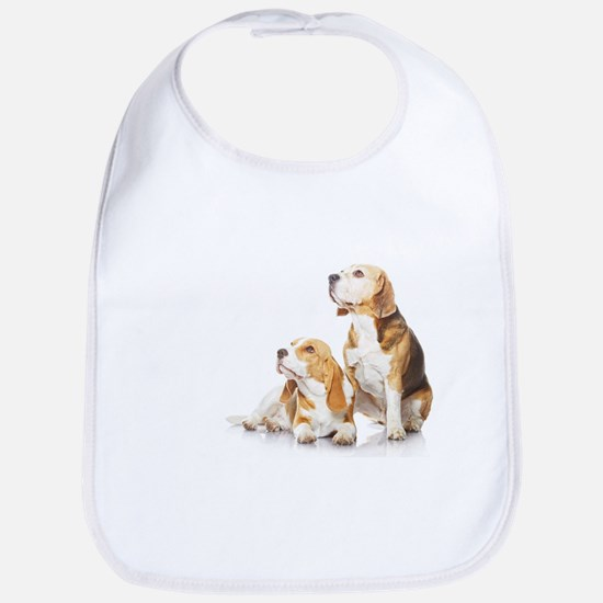 Bib - Two beagle dogs isolated on white background