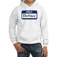 Hello: Destiney Hoodie Sweatshirt