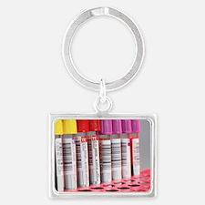 Landscape Keychain - Blood samples