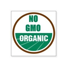 "No Gmo Organic Square Sticker 3"" x 3"""