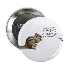 "Are You Nuts Squirrel 2.25"" Button"
