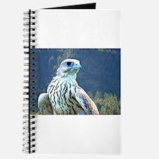 Falcon Journal