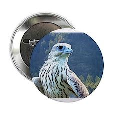 "Falcon 2.25"" Button"