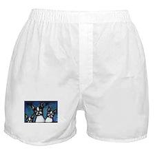 Boston three Boxer Shorts