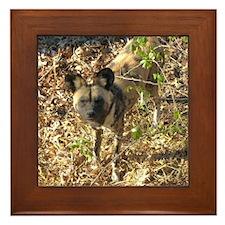 painted dog 1 Framed Tile