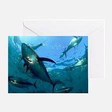 Greeting Card - Yellowfin tuna