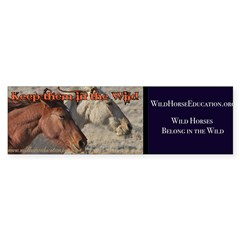 Wild Horse Education Bumper Bumper Bumper Sticker