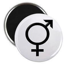 Bi Symbol Magnet