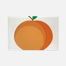 Peach Rectangle Magnet